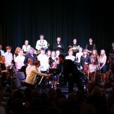 Koncert orchestru ZUŠ 2016